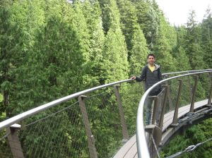 Capilano Suspension Bridge Park: Cliffwalk