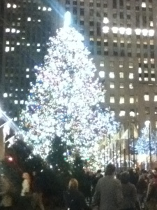 The Rockefeller Center tree, 2013